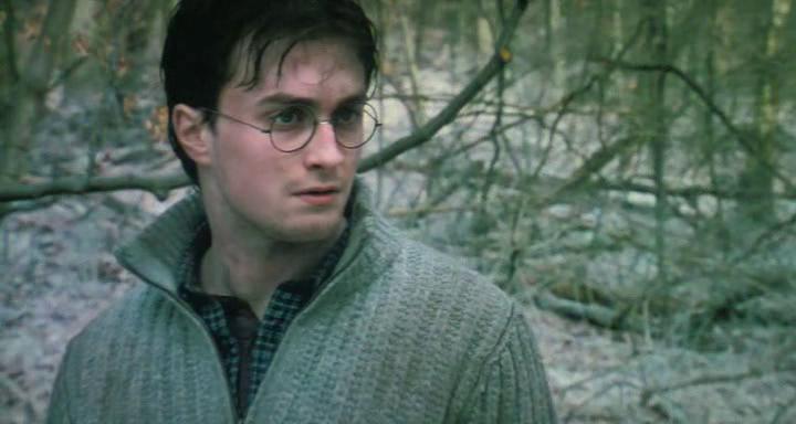Гарри Поттер и Дары смерти Часть 2 / 2 (2011)